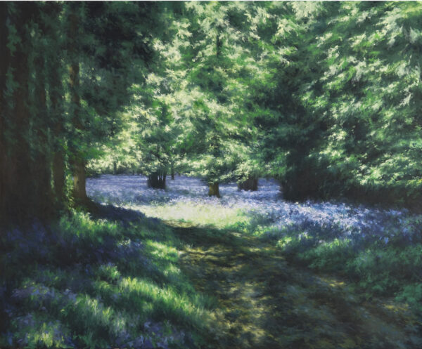 Entrance to the Bluebell Wood